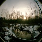 lomo fish eye camera 35mm