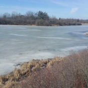 Frozen Lake Niapenco at the Benbrook Conservation Area