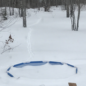 Pool full of snow