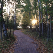 The Pinawa Trail in all seasons.