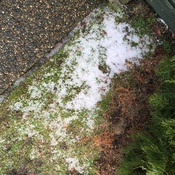 Hail in North Vancouver