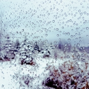 droplets of winter