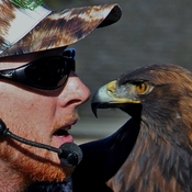 Golden Eagle & his Trainor