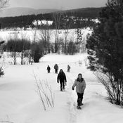 SNOWSHOEING AT ELIZABETH LAKE!