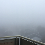 Thick fog in the morning