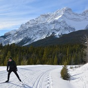 Cross country in Banff