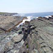 Mistaken Point NL