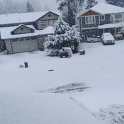 Unpredicted snow in nanaimo