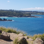 View from the top of Honolua Bay