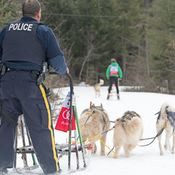 The Mushing Mountie - Windsor Nova Scotia