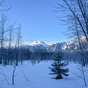 Revelstoke frosty morning