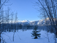 Revelstoke frosty morning  - Revelstoke, BC