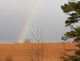 first rainbow in burntcoat this spring  - Burntcoat Head Park, NS