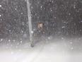 Spring Storm - Westville NS