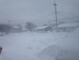 Blizzard in New Waterford, Cape Breton at 9:21am  - New Waterford, NS, CA