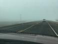 Foggy road  - Trochu, AB, CA