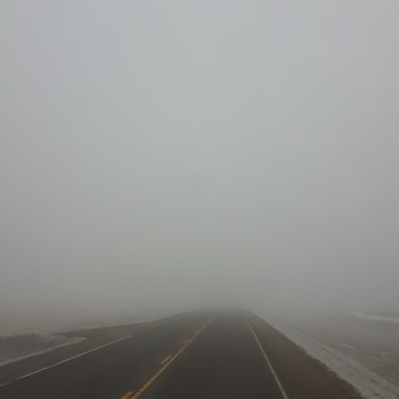 Foggy all the way from Oyen, Alberta
