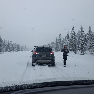 Extreme snowfall on HW93 near Jasper