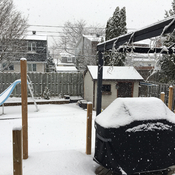Snow in Kirkland