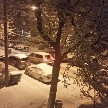 snow at nigth