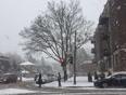 Snow Fall - Montreal, QC