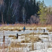 Beaver Pond hockey.