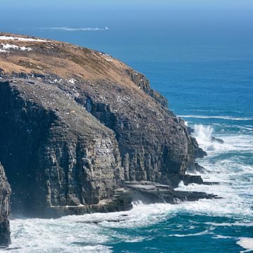 Cape St. Mary's