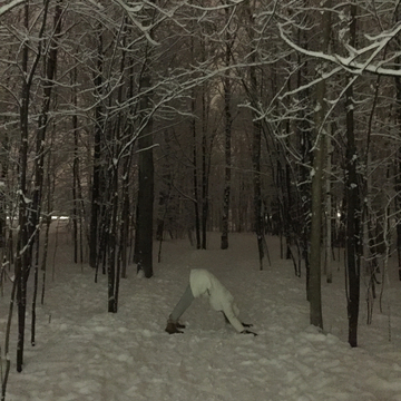 Downward snow dog
