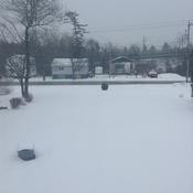 Another spring day in sackville