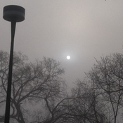 Amazing View of Sun in Heavy Fog..
