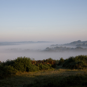 September, Ashdown Forest, England, UK