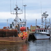 The Crab Boats