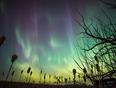 Northern Lights in Saskatoon - Saskatoon, SK