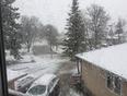 Snow in Winnipeg  - Winnipeg, MB, CA