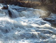 mcvikar creek running wild - thunder bay