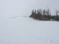 Super Snowy Day In Spruce Grove, AB. - Spruce Grove, AB, CA