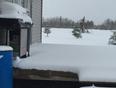 Spring snow storm - La Broquerie, MB, CA