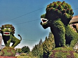 Fearsome Looking Topiary
