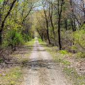 The Waterford Heritage Rail Trail in Spring
