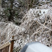 Thunder Bay Ice Storm