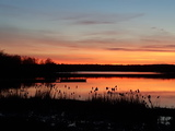 Sunset on Moira Lake - Madoc, ON