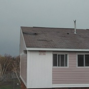 Damaged Shingles by Wind