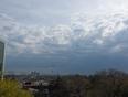 calm before storm  - Etobicoke, ON