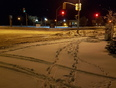 what a mess! Almost May? - Thunder Bay, ON