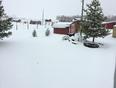 Snow at the farm - Rocky Mountain House, AB, CA