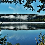 Early Morning Algonquin Park