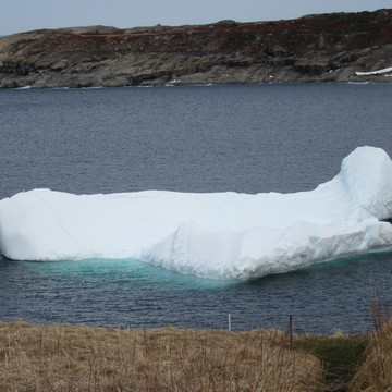 Sea ice, Floes, Icebergs