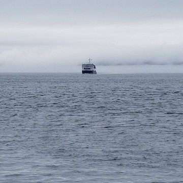 "Bell Island Ferry ""Out of the Fog"""