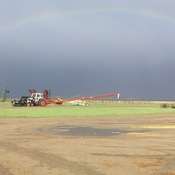 Rainbow at seeding