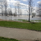 lachine lakeshore